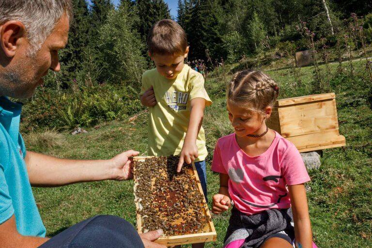Imker zeigt Kindern Bienen