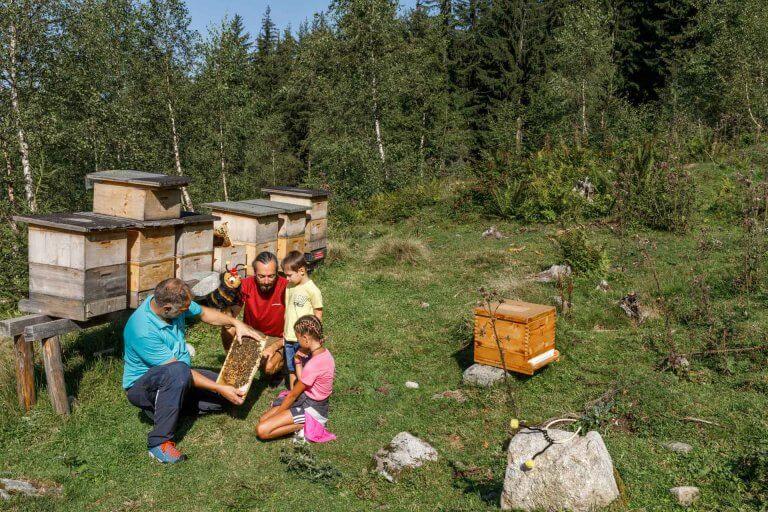 Imker zeigt Kindern Bienenwaben