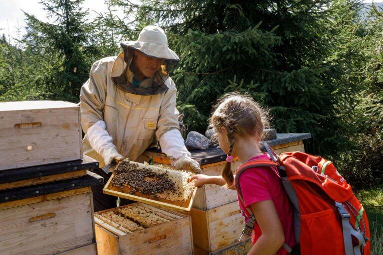 Imker zeigt Mädchen Bienen