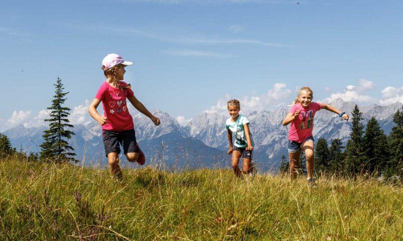 Kinder laufen auf Bergwiese