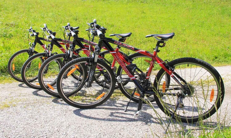 Mountainbikes Sonnleiten Tux