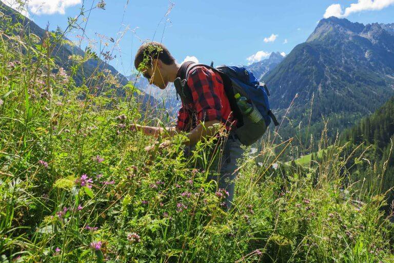 Daniel auf der Bergwiese